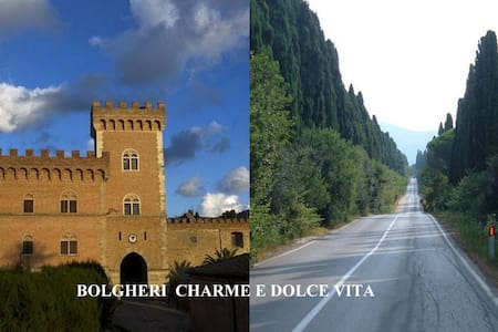 Bolgheri  charme and dolce vita - Bolgheri - Appartement