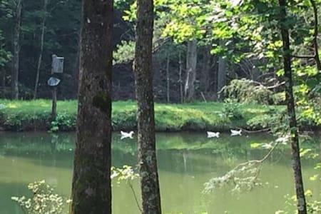 Duck Pond Mountain Retreat w/stream - House