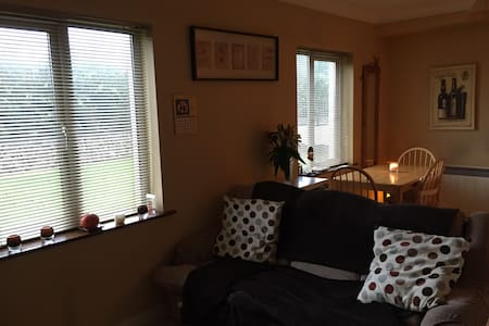 Friendly, comfortable&private. - Galway - Apartment