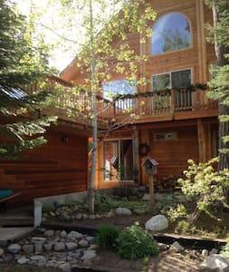 Fireweed Cabin - McCall - Бунгало