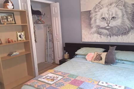 Quirky Cat Themed Room for 2-pool & tennis court - Orlando
