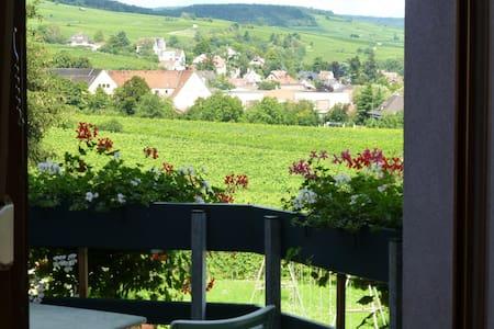 gîte charme Ribeauvillé,balcon,vue vignes 2/4 per - Daire