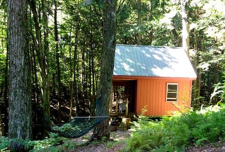 Cabin Relief- Relax,Restore, Rejuvenate - Hyde Park