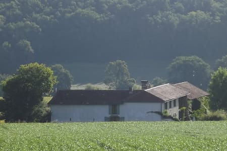 Barn conversion with private garden - Aux-Aussat - Haus