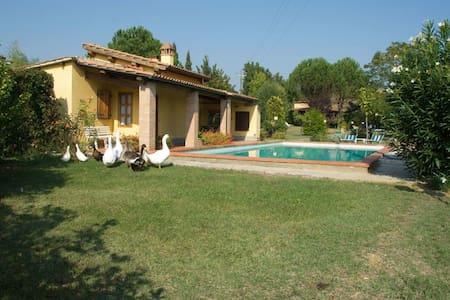 Pagliazzone, sleeps 4 guests in Perelli - Bucine - Villa