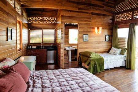Casa Jungla, charming little cabin - Montezuma - Cabin
