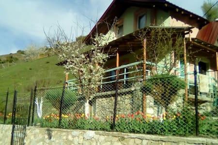 Vila Vrben - Casa de huéspedes
