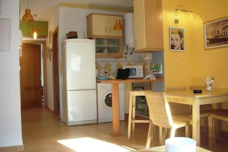 Apartamento en Zona Tranquila - Recreo Sta. Ana. - Appartement