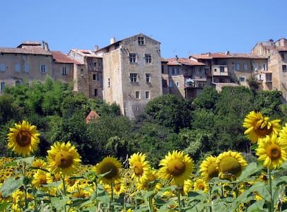 14 century Maison de Féraud-Barèges - Aurignac