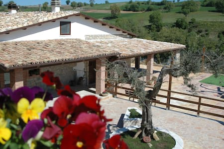Relax in collina - Bed & Breakfast