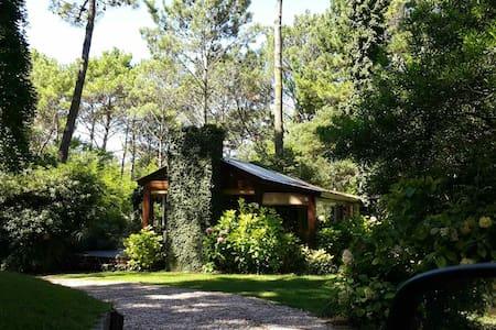 Cabaña encantada en bosque Cariló - Cariló - Chalet