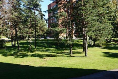 Narva Jõesuu J.Poska 45 - Apartamento