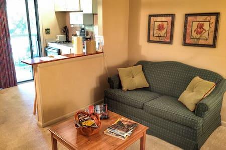 Studio Condo/Villa - Lake Lure, NC - Wohnung