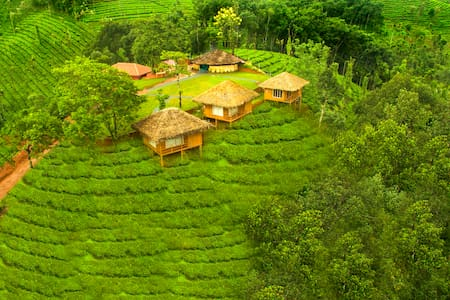 Palm Cottages in Periya forest of Wayand, Kerala - Kalpetta - Pensione