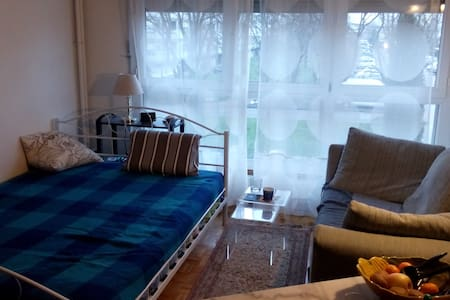 Studio close to Geneva city center - Huoneisto