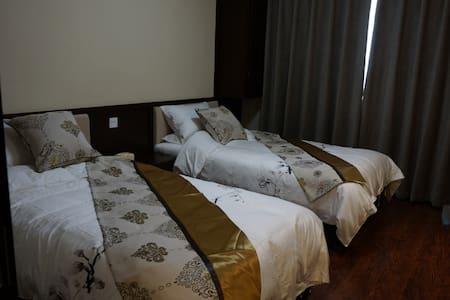 丝路艺墅201房间 - Changji Huizuzizhizhou - Bed & Breakfast