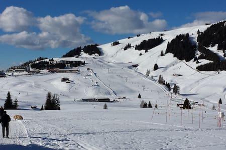 Appartamento Alpe di Siusi - Province of Bolzano - South Tyrol - Wohnung