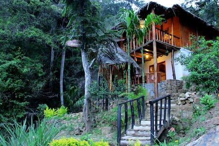 Ella Bamboo cabana - Ella - Bed & Breakfast