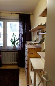 1 Zi inkl. Küchen- Badmitbenutzung - Apartamento