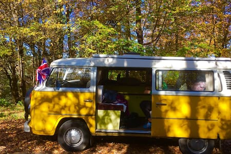 Little Miss Sunshine 1976 T2 VW Van - Tolmin - Asuntoauto