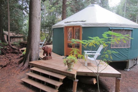 Yurt in the Woods - Jurta