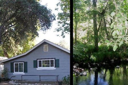 River Oaks - Ház