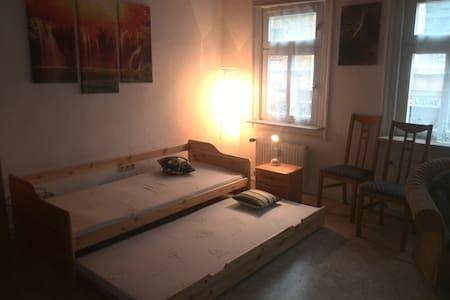 Altstadt Idylle  3 ZKBB Wohnung /6+ - Hochheim am Main - Kondominium