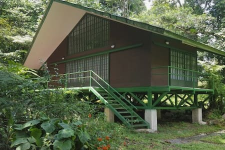 Jungle Cottage - Guapiles - Chalet