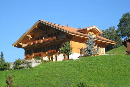 Ferienwohnung im Chalet Guggenhubel - Apartment