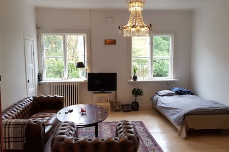 Bright apartment, 2 beds, 6 min from city center - 公寓