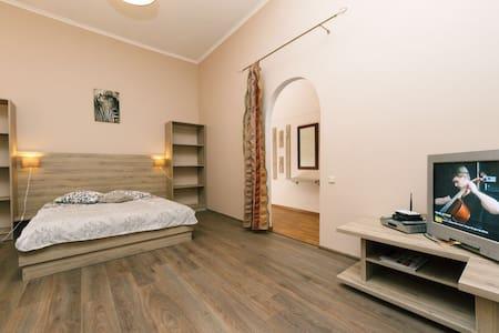 KIEV ARENA CENTER 1 bedroom VIP - Київ - Lägenhet