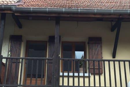 Studio de 40m2 au cœur des vignes - Apartment