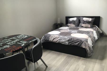 Nouveau à Strasbourg ! Magnifique studio de 30 m2 - Apartment