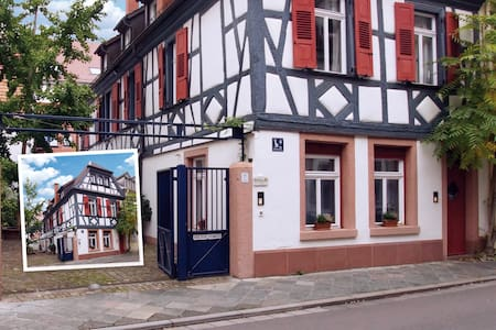 Modernes Apartment mit Historie - Speyer - Appartement