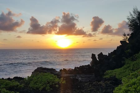 Jungle Escape - Pāhoa