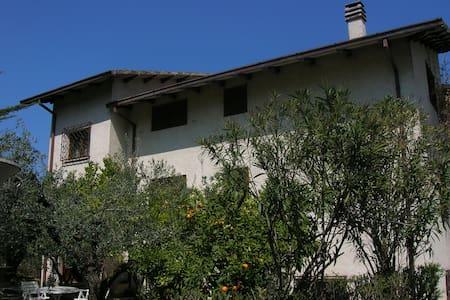 Casale in uliveto - Villa