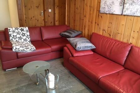 Ferienwohnung nahe dem Skigebiet Andermatt Sedrun - Rueras - Apartment
