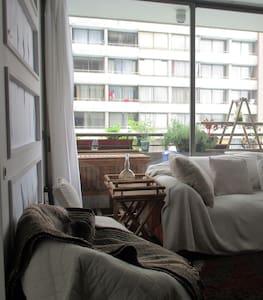 Cómodo departamento Parque Forestal-Bellas Artes - Apartamento