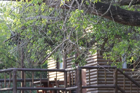 Treehouse in private game reserve - Hluhluwe - Trädhus