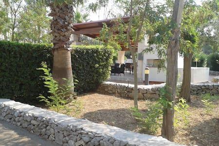 Casette Camardia 1 - Sava - Haus