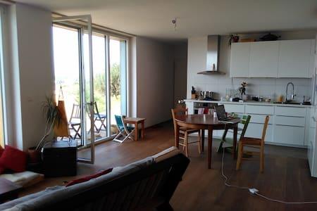 Chambre dans jolie maison proche de Lausanne - Apartment