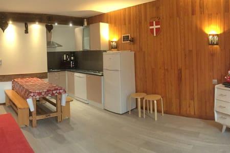 Studio La Clarine, station de ski familiale - Aillon-le-Jeune - Apartment