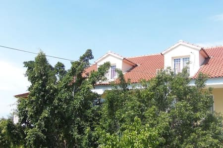 House in an olive grove - Paralia Vergas