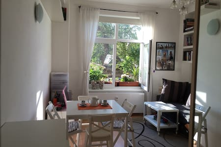 Cosy flat 5 minutes from metro and from a big park - Praha