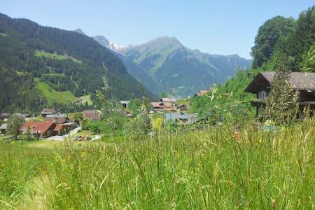 Natur pur - Erholung in den Bergen im Montafon - Apartament
