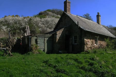 Dunglass Burnfoot Cottage - self catering - Dom