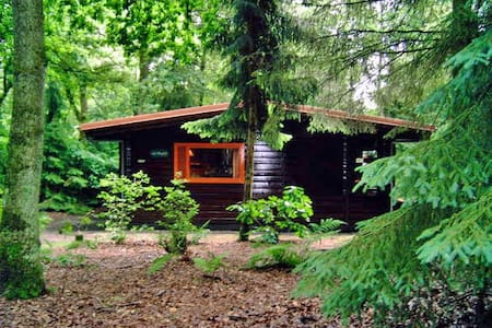 Knus huis in het bos, met grote tuin - Bungalow