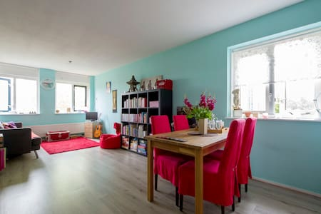 Cosy appartment, 3.7km from centre - Groningen - Andere