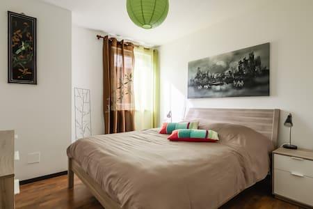 Bel appartement grand et récent en bord des vignes - Gertwiller