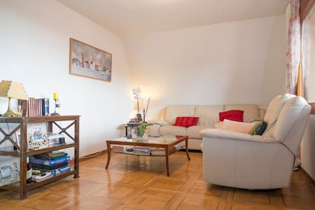 just 50m from Monastery El Escorial - Flat
